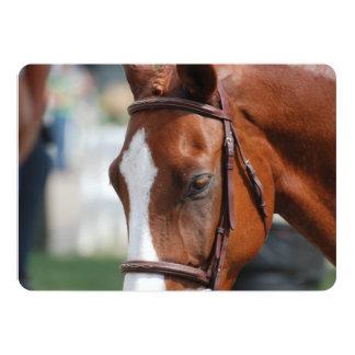 Gorgeous Chestnut Show Horse 13 Cm X 18 Cm Invitation Card
