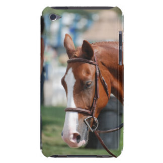 Gorgeous Chestnut Show Horse iPod Touch Cover