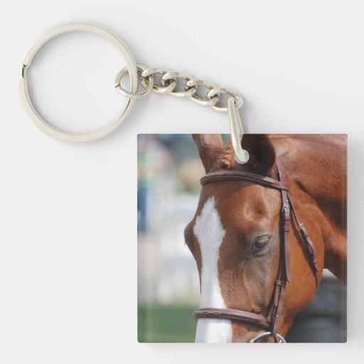 Gorgeous Chestnut Show Horse Acrylic Key Chains