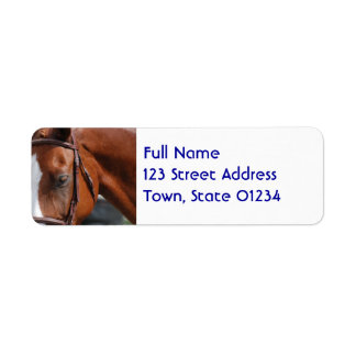 Gorgeous Chestnut Show Horse Return Address Label