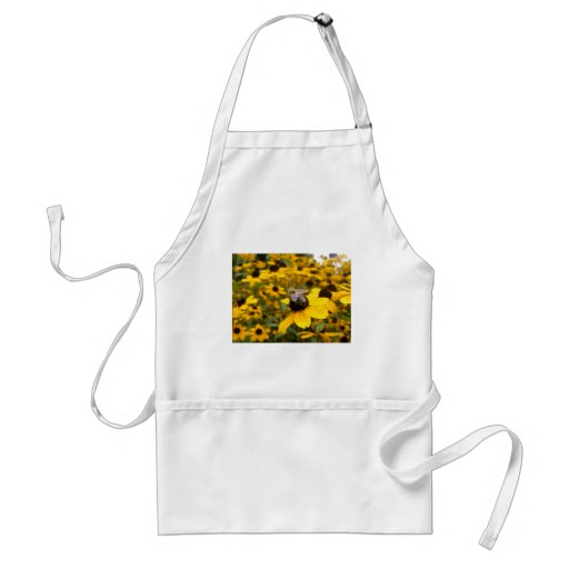 GORGEOUS DAISY FIELDS & HONEY BEE APRONS