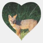Gorgeous Fox Stickers