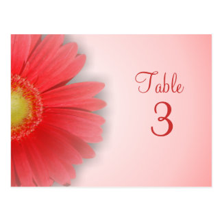 Gorgeous Gerbera Table Number Postcard