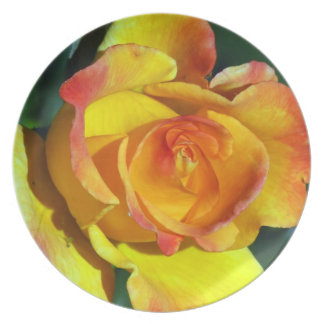 Gorgeous Glowing Golden Rose Plate