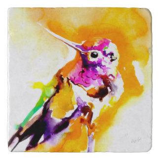 """Gorgeous Gorget"" Hummingbird Print Trivets"