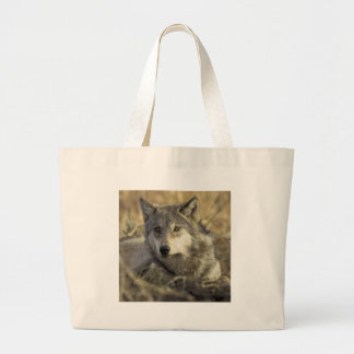 Gorgeous Gray Wolf Tote Bag