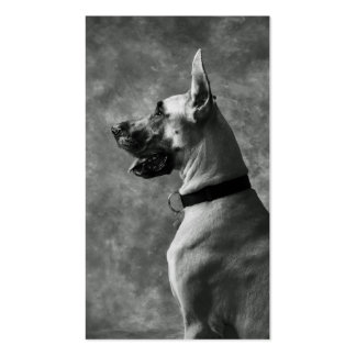 Gorgeous Great Dane Business Card Template