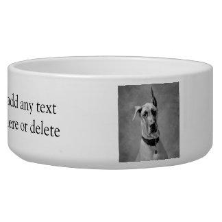 Gorgeous Great Dane Dog Water Bowl