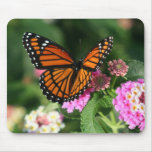 Gorgeous Monarch Butterfly Design Mouse Pad