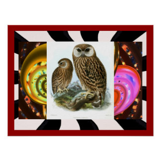 GORGEOUS OWL COLLAGE POSTER