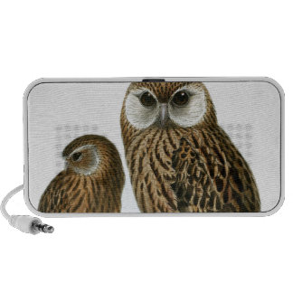 GORGEOUS OWL EYES TRAVELLING SPEAKERS