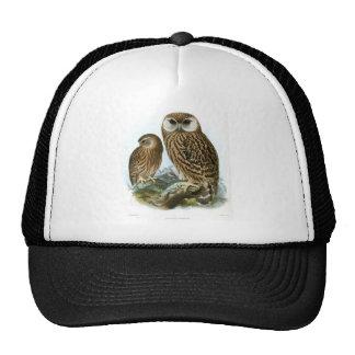 GORGEOUS OWLS CAP