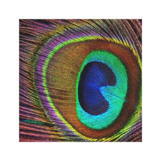 Gorgeous Peacock Feather Throw Pillow Canvas Print