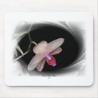 Gorgeous Petals 11 Mouse Pads