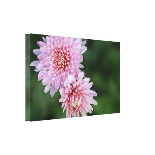 Gorgeous Pink Flowers Stretched Canvas Print