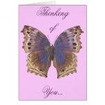 Gorgeous Purple Butterfly