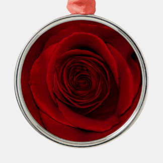 Gorgeous Red Rose Macro Photo Ornaments
