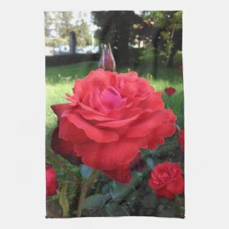 Gorgeous Red Roses Tea Towel