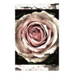 Gorgeous Rose Personalized Stationery