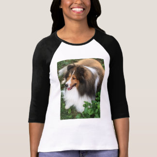 Gorgeous Sheltie Lover Baseball Shirt! T-Shirt