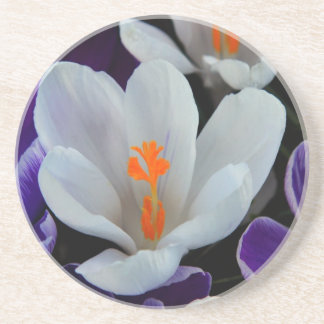 Gorgeous Spring Tulips Coasters