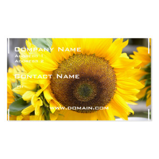 Gorgeous Sunflower Pack Of Standard Business Cards
