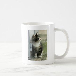 Gorgeous tabby kitten design - so cute! coffee mug