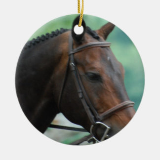 Gorgeous Warmblood Horse Ornament