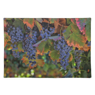 Gorgeous Wine Country Table Setting Placemats