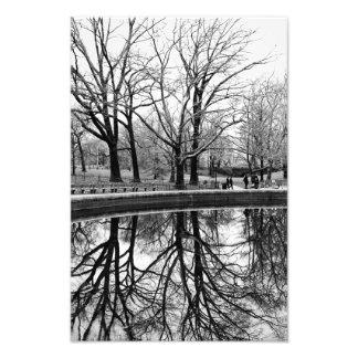 Gorgeous Winter Landscape in Central Park Art Photo
