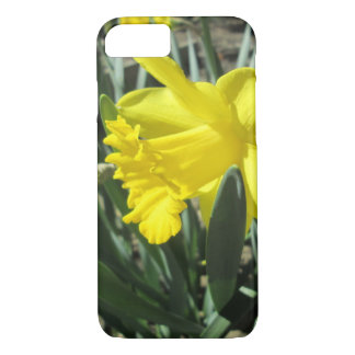 Gorgeous Yellow Daffodils iPhone 7 Case