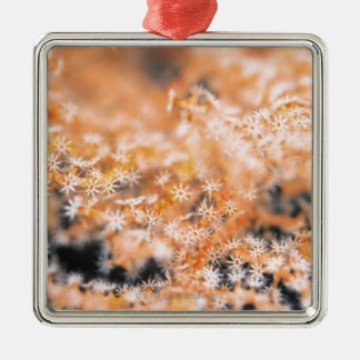 Gorgonian coral 2 christmas ornament
