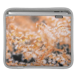 Gorgonian coral 2 iPad sleeve