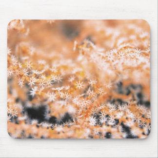 Gorgonian coral 2 mouse mat