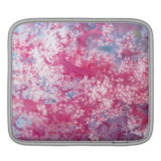 Gorgonian coral iPad sleeve