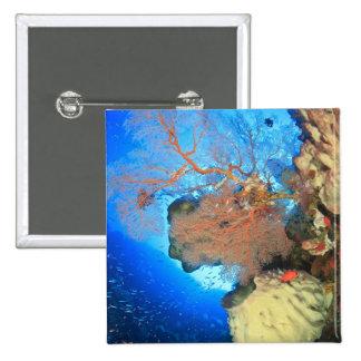 Gorgonian sea fans, Gunung Api Island, Banda 15 Cm Square Badge