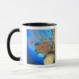 Gorgonian sea fans, Gunung Api Island, Banda Mug