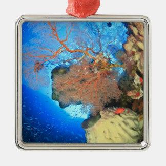 Gorgonian sea fans, Gunung Api Island, Banda Silver-Colored Square Decoration