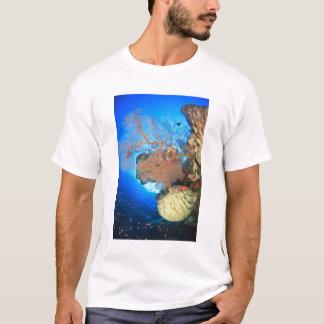 Gorgonian sea fans, Gunung Api Island, Banda T-Shirt