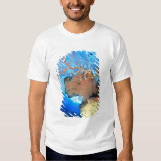 Gorgonian sea fans, Gunung Api Island, Banda Tee Shirt