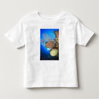 Gorgonian sea fans, Gunung Api Island, Banda Toddler T-Shirt