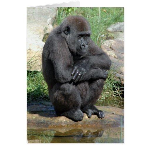 Gorila Sitting Greeting Card