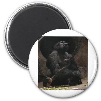 Gorilla 6 Cm Round Magnet