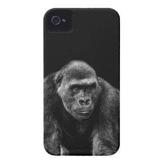 Gorilla Ape Primate Wildlife Animal Photo Case-Mate iPhone 4 Cases