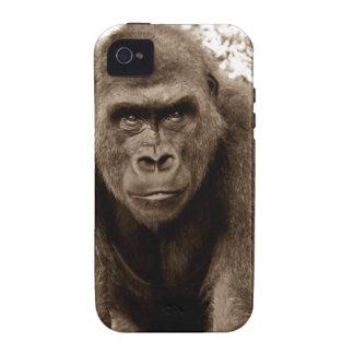 Gorilla Ape Primate Wildlife Animal Photo Vibe iPhone 4 Covers