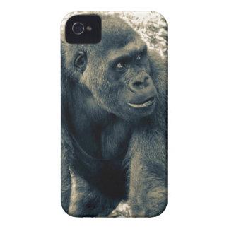 Gorilla Ape Primate Wildlife Photo Case-Mate iPhone 4 Case