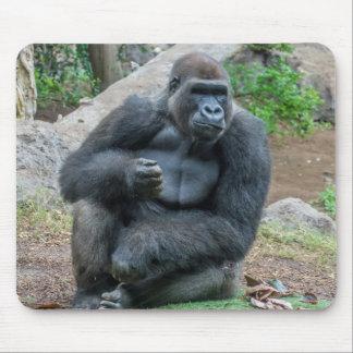 Gorilla at the zoo mousepad