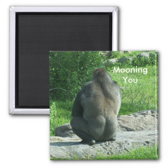 gorilla backside, Mooning You Square Magnet
