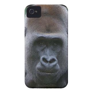 """""""Gorilla"""" iPhone 4 Cover"""