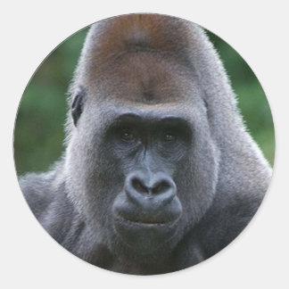 """Gorilla"" Classic Round Sticker"